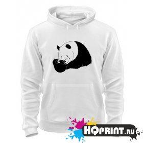 Толстовка Панда в очках